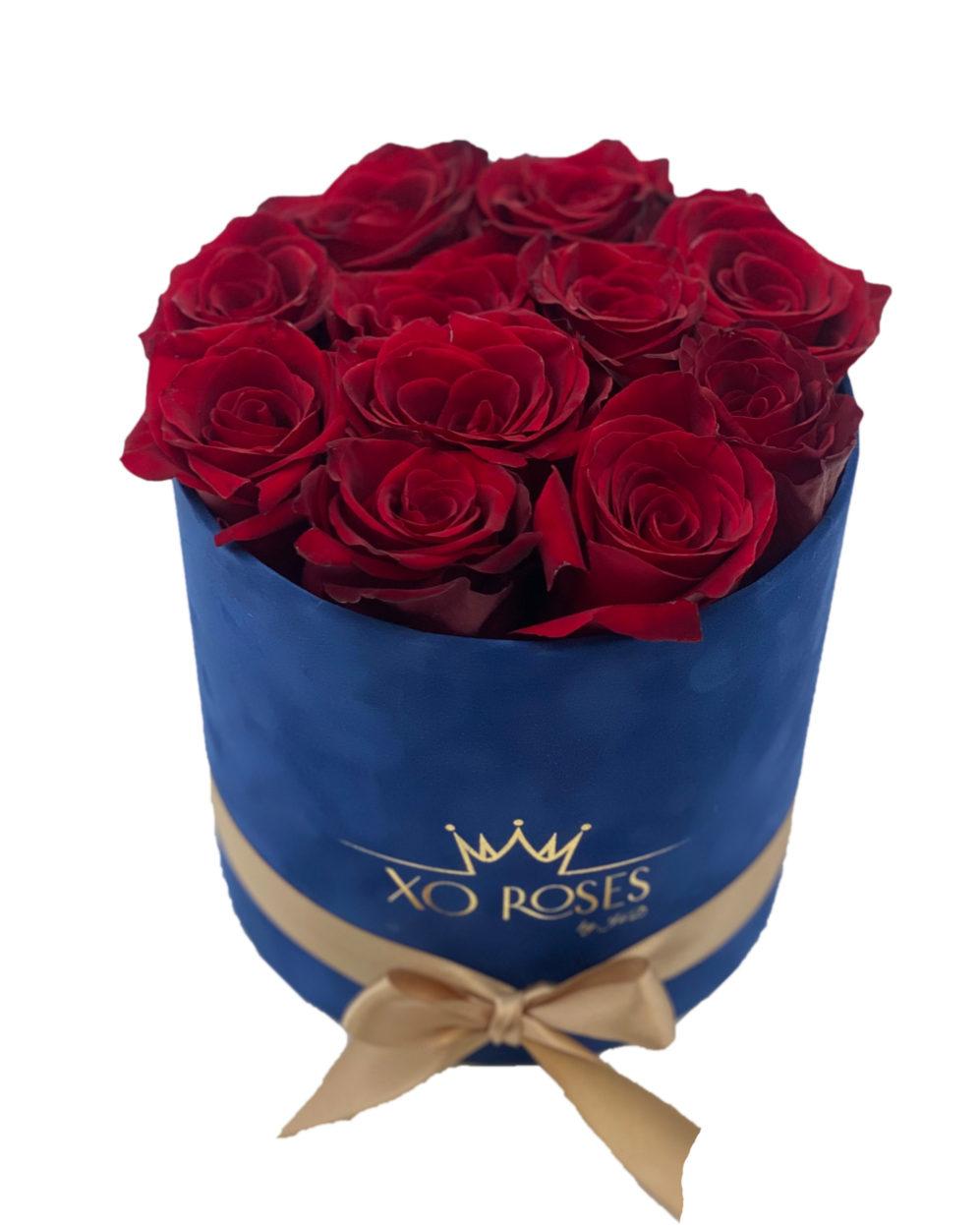 Semišový Royal Blue box – Classic